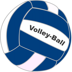 Image is of a blue and white volleyball.