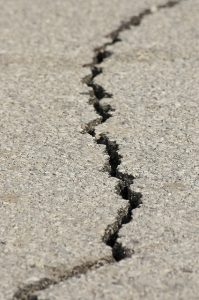 Image is a crack in the asphalt.