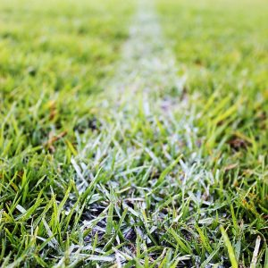 Image is of a white football field stripe on the grass.