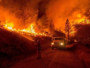 Image is of a wildfire with firefighter and truck.