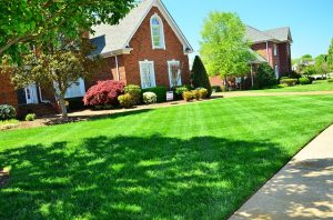 Image is a home with a well-maintained lawn and landscaping.