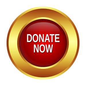 Image is a Donate Now button.